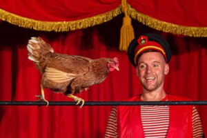 Magic Circus, daar ben je als de kippen bij!